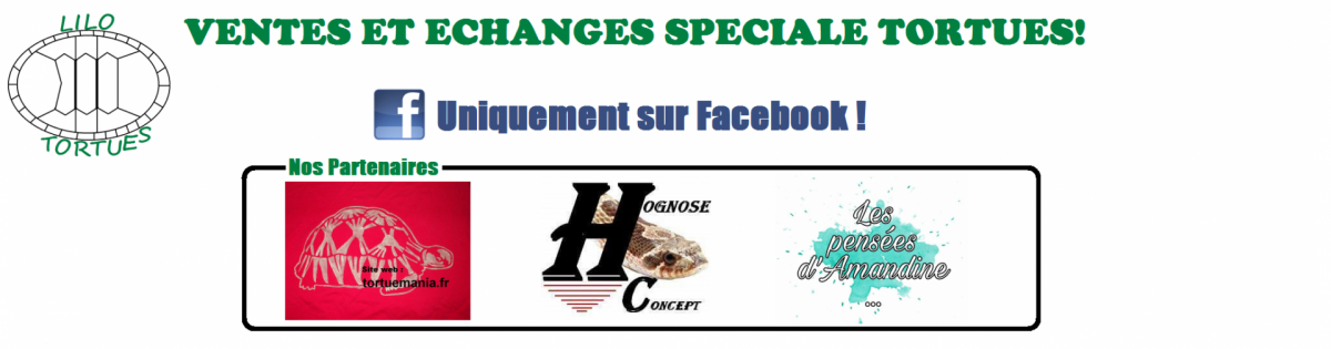 Couverture groupe facebook 2019 taille normal